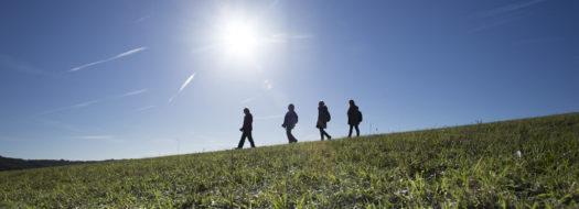 Explore Kent's top 5 family walks