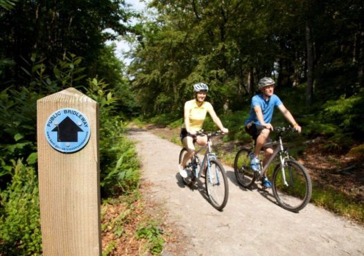Couple cycling on a cycle route