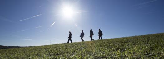 Family walks in Kent