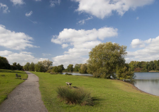 An easy access walking trail at Haysden Country Park